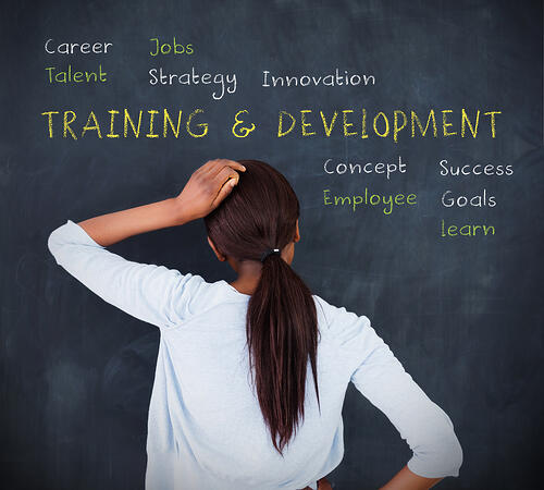 Here are a few ways to optimize your nonprofit training program.